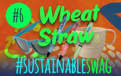#6 Wheat Straw Promotional Products – Eco Friendly Conference #sustainableswag