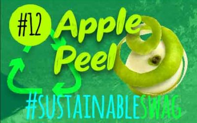 #12 Apple Peel Promotional Products – Eco Friendly Conference #sustainableswag